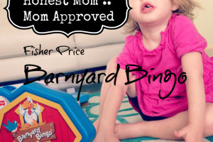Lauren H backyard bingo review title final