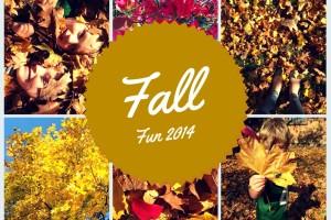 Fall Fun 2014