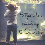 5 Tips for a More Enjoyable Trip to SeaLife