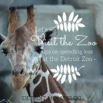 How to Spend Your Summer {But Not All Your Money} at the Detroit Zoo