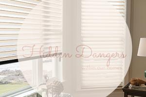 Hidden Dangers-2