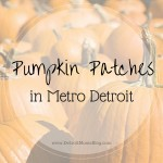 Pumpkin Patches in Metro-Detroit: We've Got You Covered