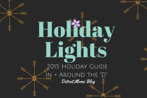Holiday Lights4