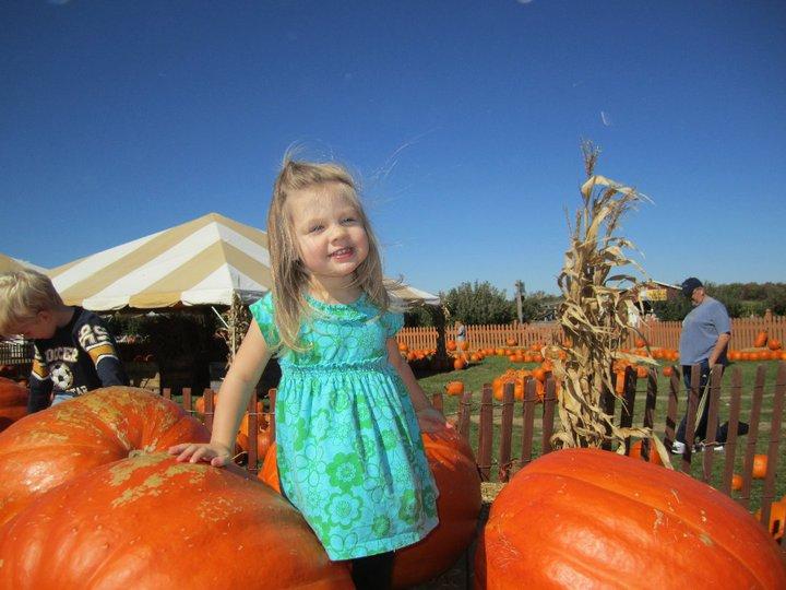 Blakes Pumpkins