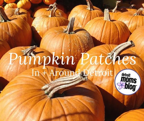 pumpkin-patches-2