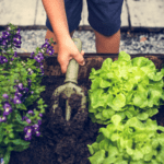 A Little Dirt Doesn't Hurt: Tips for Gardening with Kids