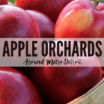 DMB's Guide to Apple Orchards