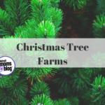 Guide to Christmas Tree Farms
