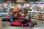 backpack-book-books-256431