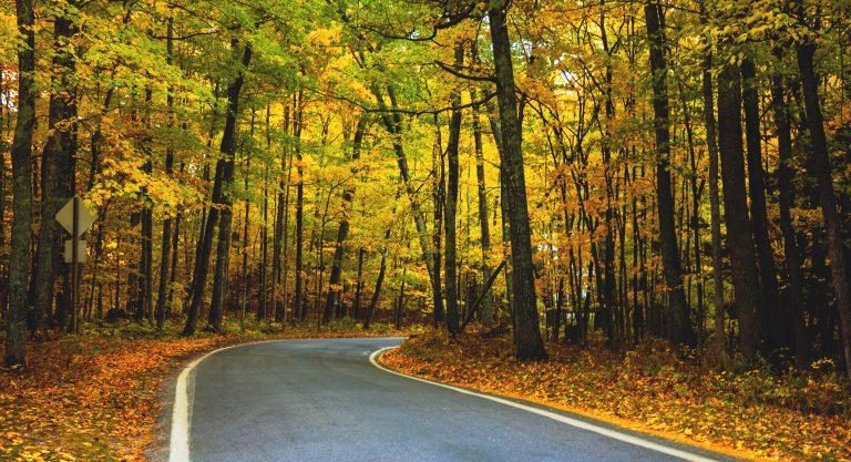 Michigan's Top 5 Fall Foliage Scenic Drives